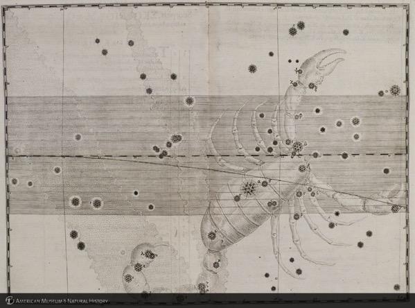 a short essay about robert hooke 1451-- christopher columbus (d1506) is born as is amerigo vespucci (d1512), explorers 1462-- one of the major publications of renaissance natural philosophy, the epitome of ptolemy's.